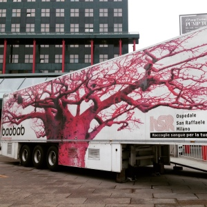 Il Baobab si trova ora presso Piazzale Cadorna a Milano, fino al 10 luglio compreso