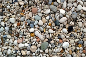 Spiaggia-Portonovo.jpg_200636213328_Spiaggia-Portonovo