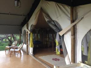 Joy's camp