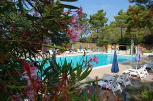 La Francesca Resort - Piscina, Oleandro rosa