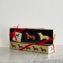 Dachshund Chocolates lifestyle