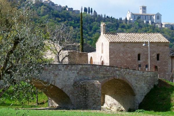 bosco-di-san-francesco-l-antico-monastero_45882